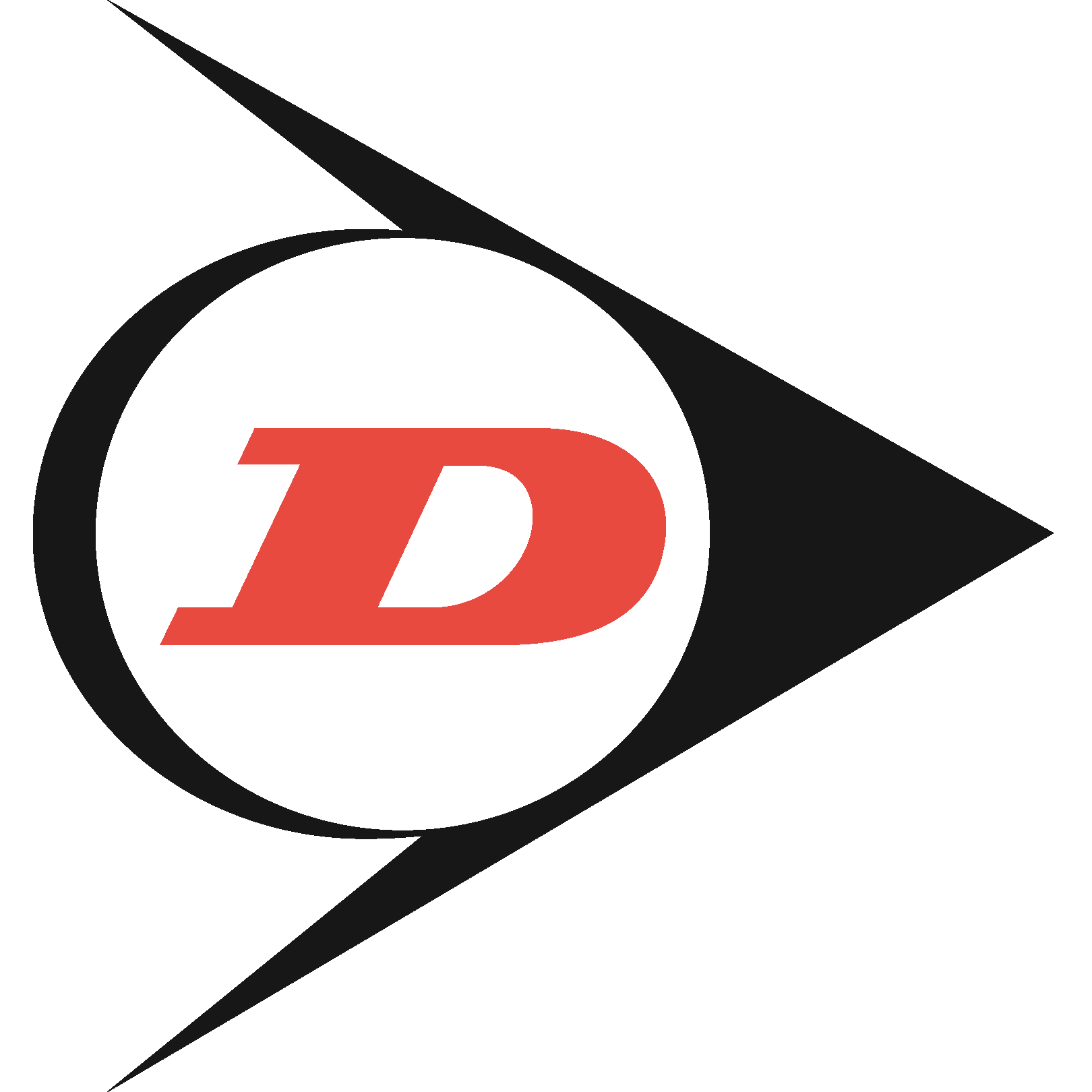 Dunlop Systems & Components small logo